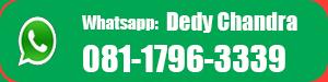 info.diklat.org whatsapp